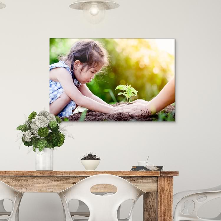 Acrylic Prints - Sample Photo 1 of 4